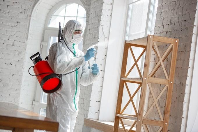 Fumigación – Consejos para el control de plagas