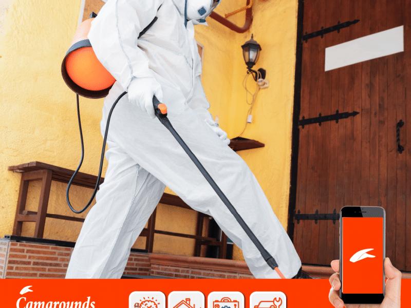 Consejos para desinfectar tu casa – Desinfección profesional