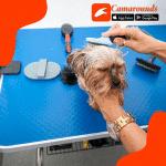 Con Camarounds puedes obtener servicios de aseo de mascotas