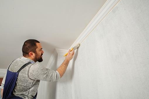 ¿Cuánto cuesta un pintor profesional?